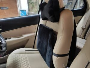 Autoform Neck Pillow